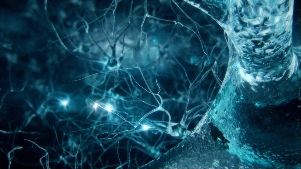 ნეიროქირურგის ვიზიტი გერმანიიდან